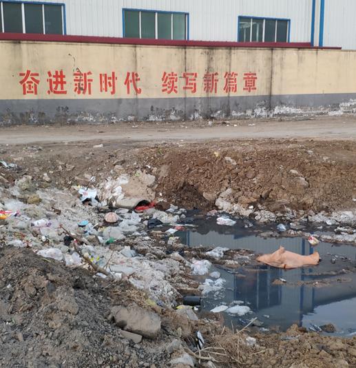 山东高密:莫让产业之利变成污染之弊!
